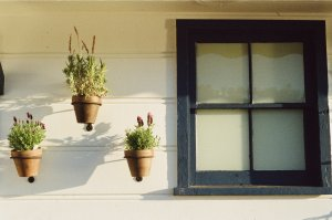 deciding on selling a house in probate